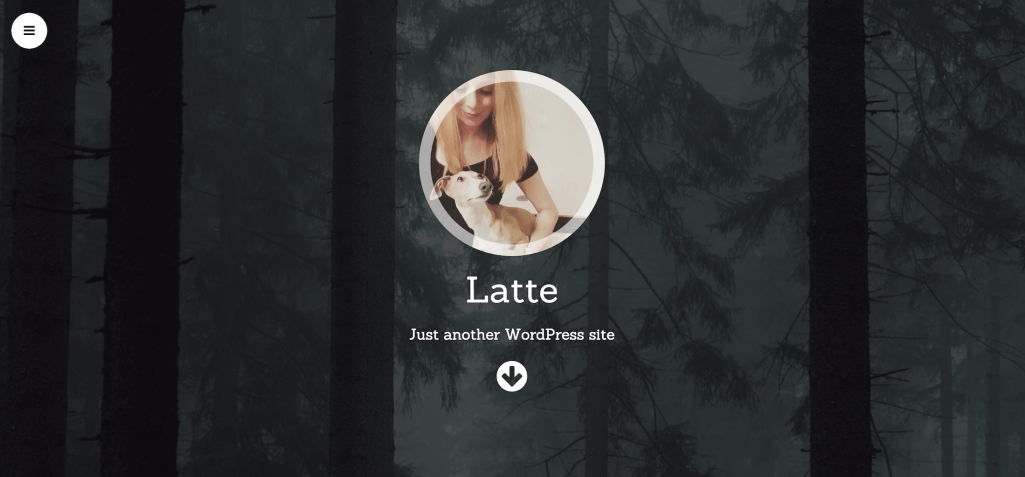 WordPress portfolio theme Latte